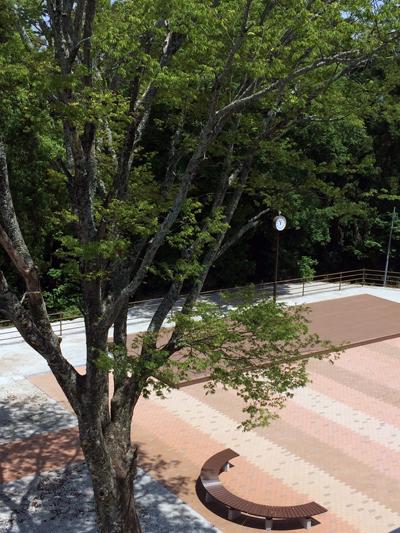 高校本館中庭完成3